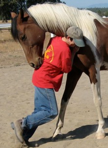 Equine Assisted Therapy for Individuals